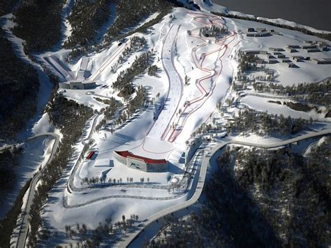 Canada Earns Gold, Two Silvers in Sochi Skicross | First