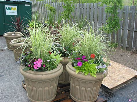 Gallery - Pictures of plants and plant installations done